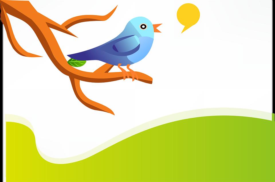 Twitter cambia su algoritmo