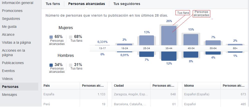 Auditoría en Facebook